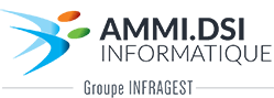 AMMI DSI – Informatique Orléans
