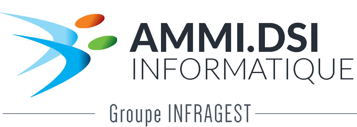 logo AMMI.DSI
